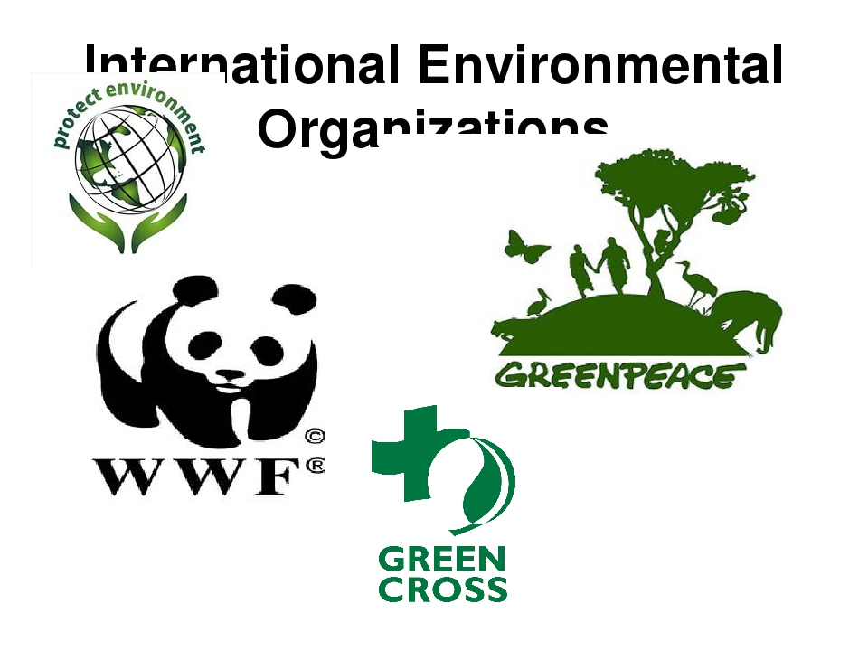 environmental organization .