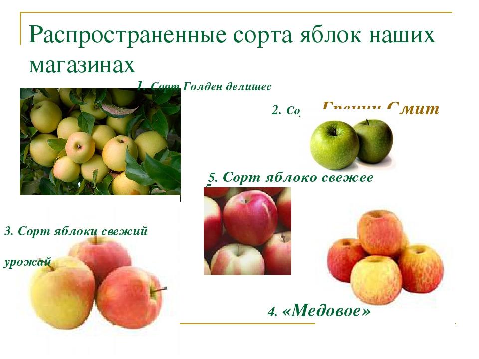 сорта яблок список по алфавиту журавлик видит