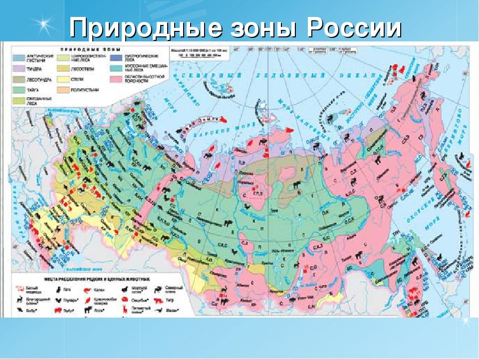печем природный зоны россии транспорт нашел