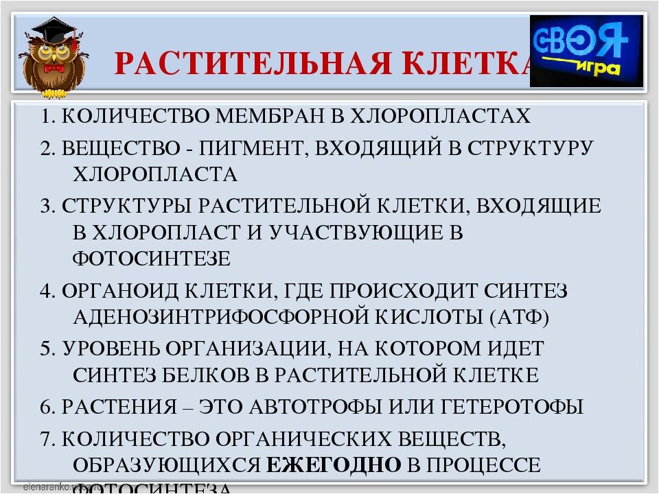 РАСТИТЕЛЬНАЯ КЛЕТКА 1. КОЛИЧЕСТВО МЕМБРАН В ХЛОРОПЛАСТАХ 2. ВЕЩЕСТВО - ПИГМЕН...