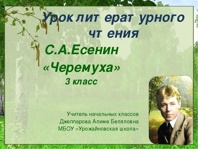 Урок литературного чтения С.А.Есенин «Черемуха» 3 класс Учитель начальных кла...