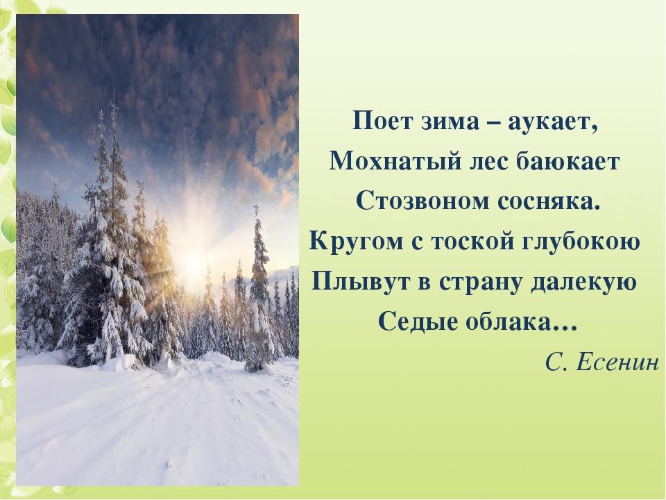 Поет зима – аукает, Мохнатый лес баюкает Стозвоном сосняка. Кругом с тоской г...