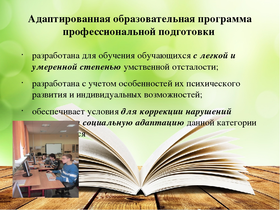Адаптированная образовательная программа профессиональной подготовки разработ...