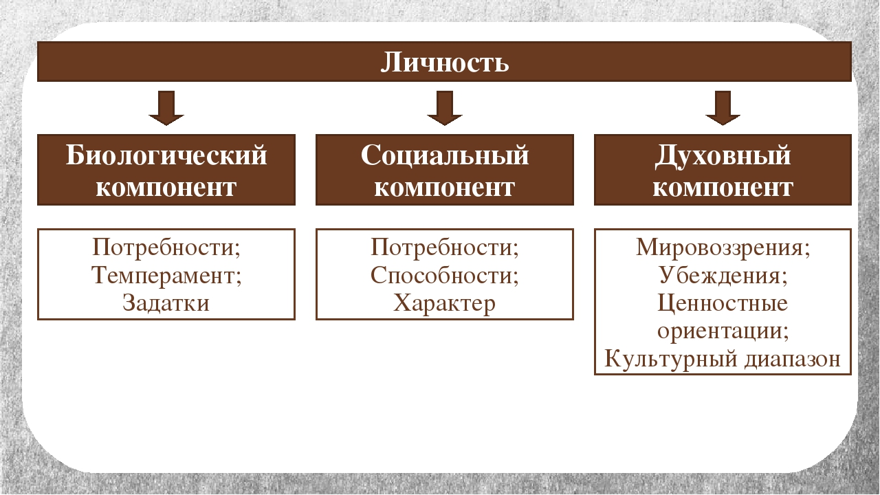Личность Социальный компонент Духовный компонент Биологический компонент Потр...