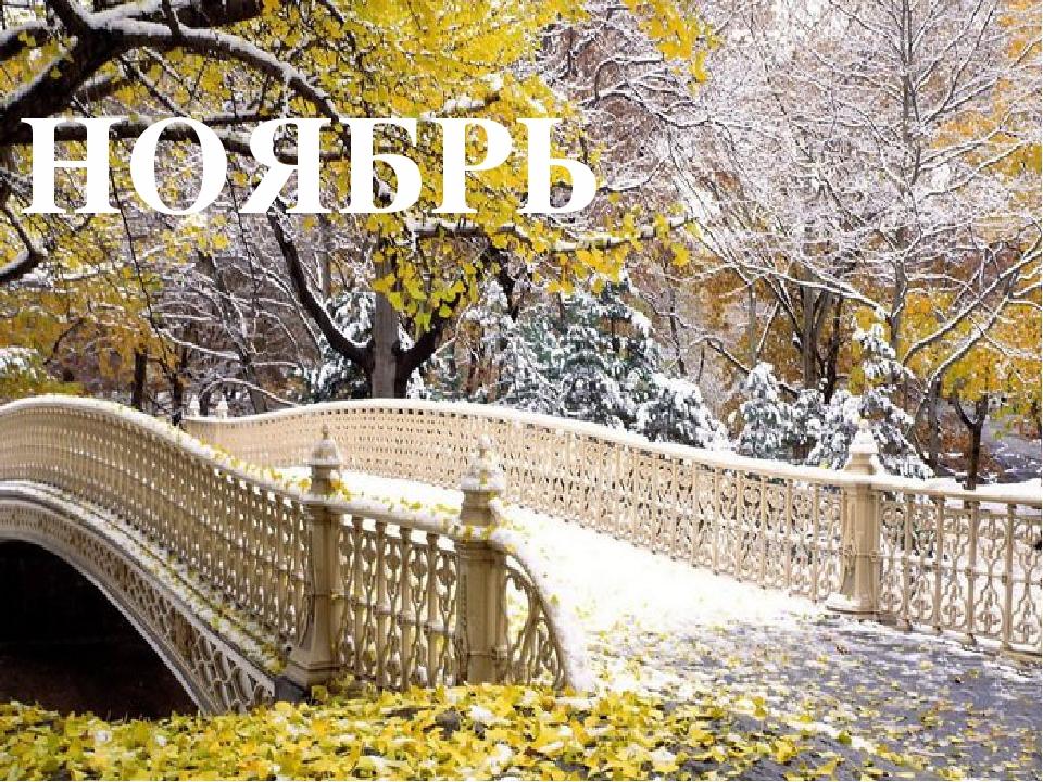 фото поздняя осень и первый снег анимационные картинки смотреть и