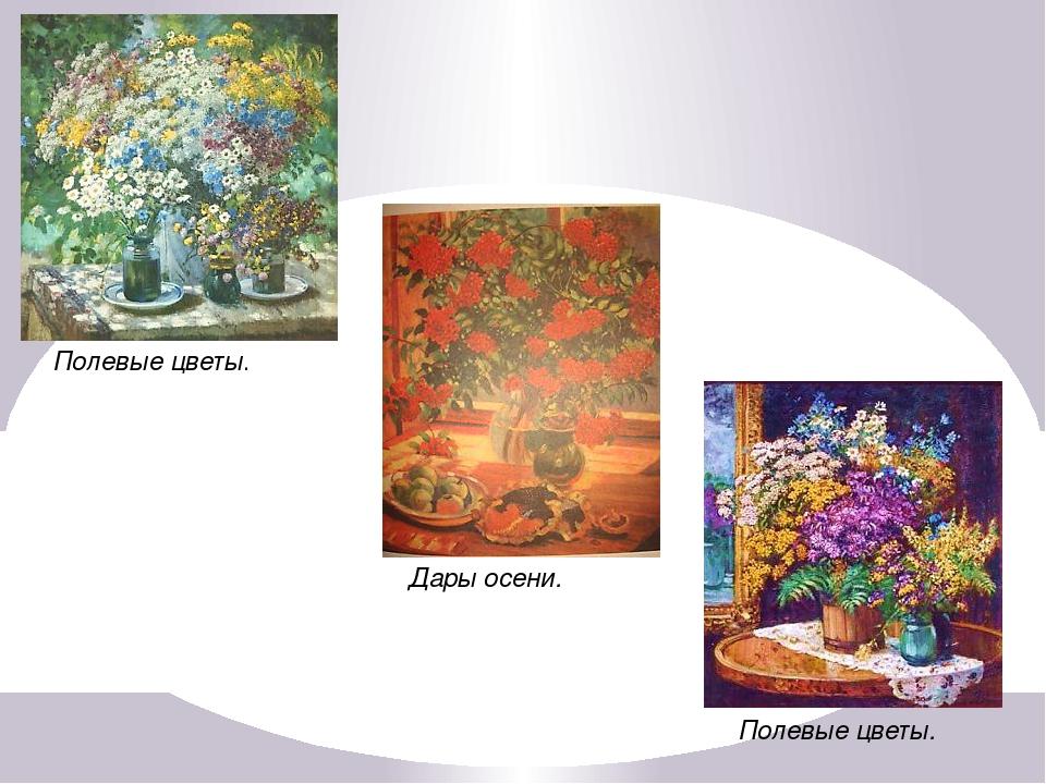 Полевые цветы. Полевые цветы. Дары осени.