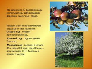 По записям С. А. Толстой в саду насчитывалось 6385 плодовых деревьев различн