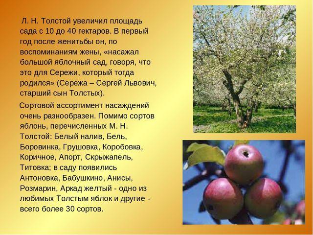 Л. Н. Толстой увеличил площадь сада с 10 до 40 гектаров. В первый год после...