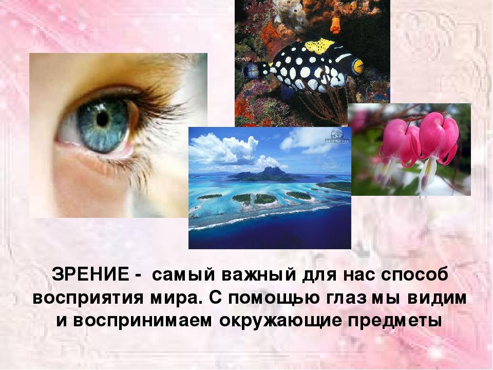 Картинки к теме зрение