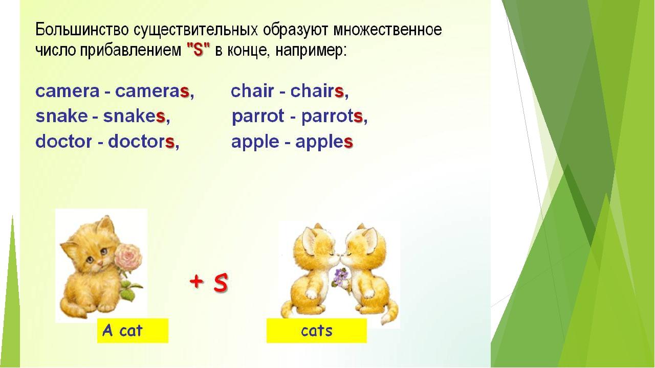 измерять английский единственное и множественное число написать три