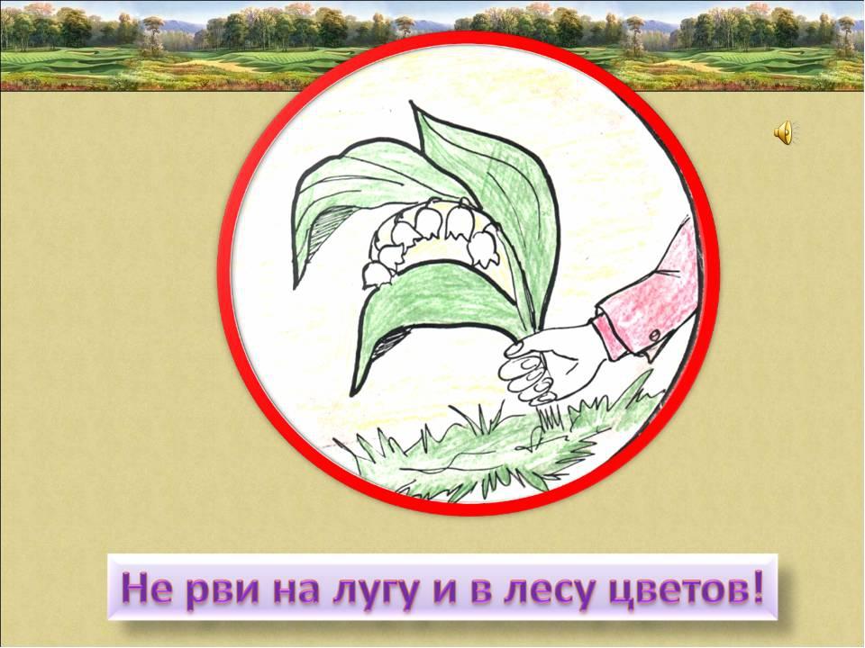 картинки для охраны растений облака мамматус