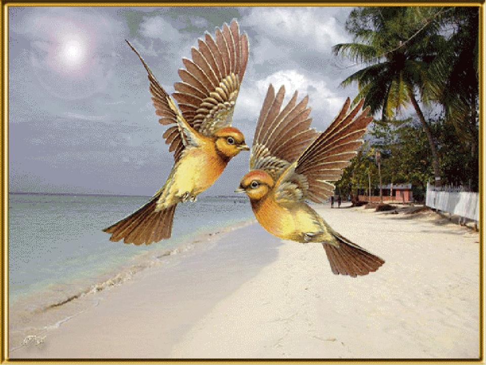 Улетела пташечка картинки