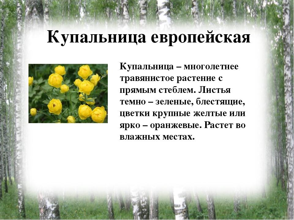 картинки с растениями брянской области