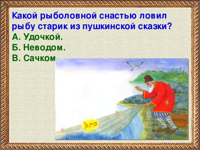 какой рыболовной снастью ловил рыбу старик из сказки о золотой рыбке