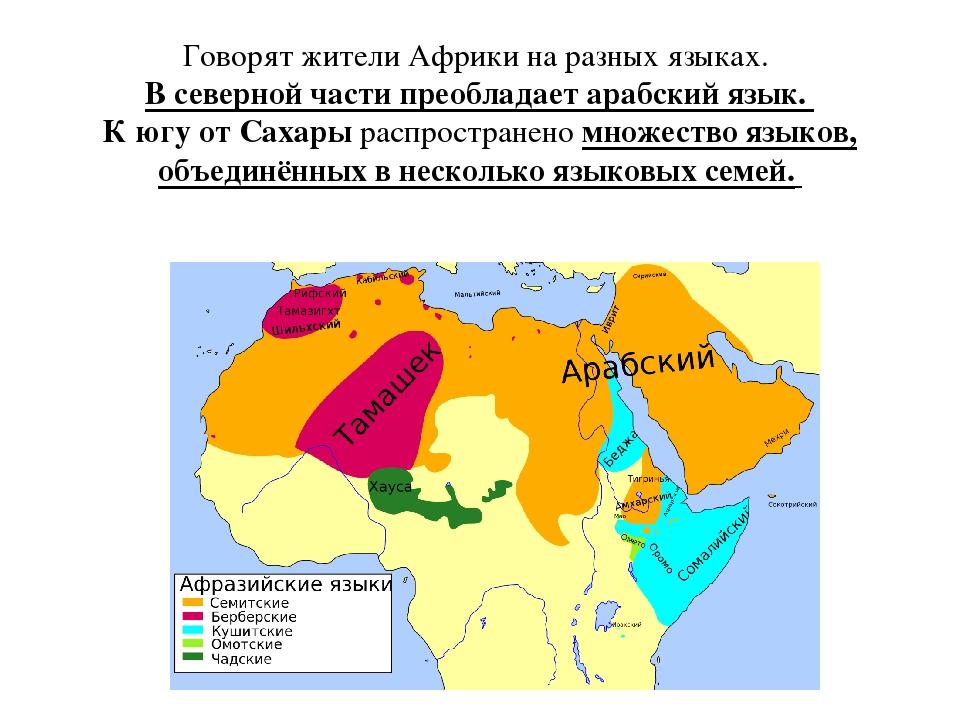 Лингвоэксперт  генеалогическая классификация языков