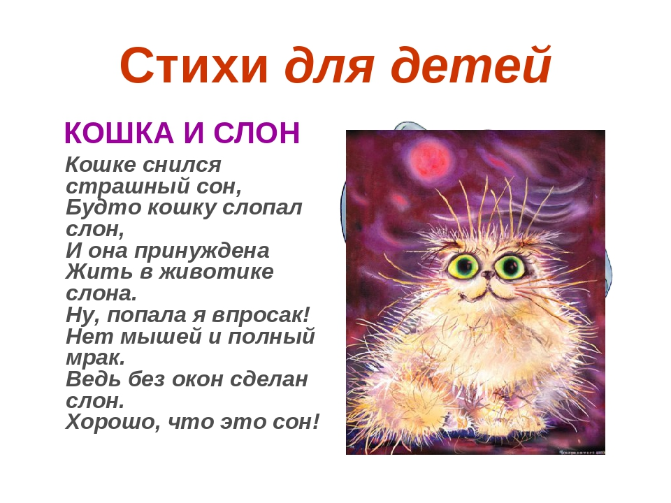 Стихи о детсве и котятах