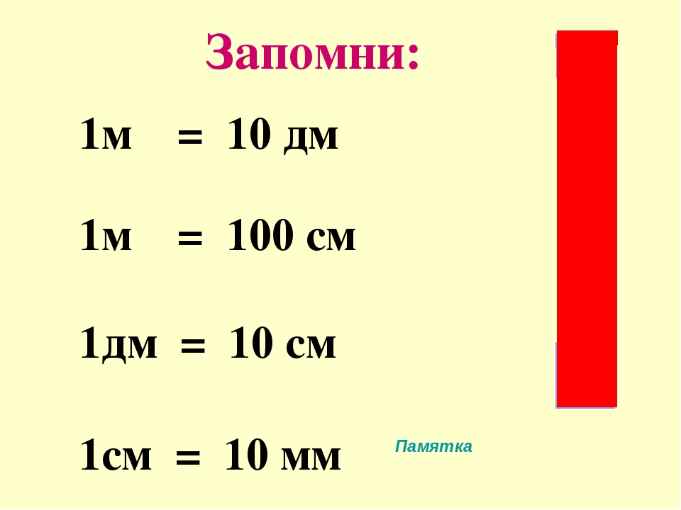Дециметр и метр картинки