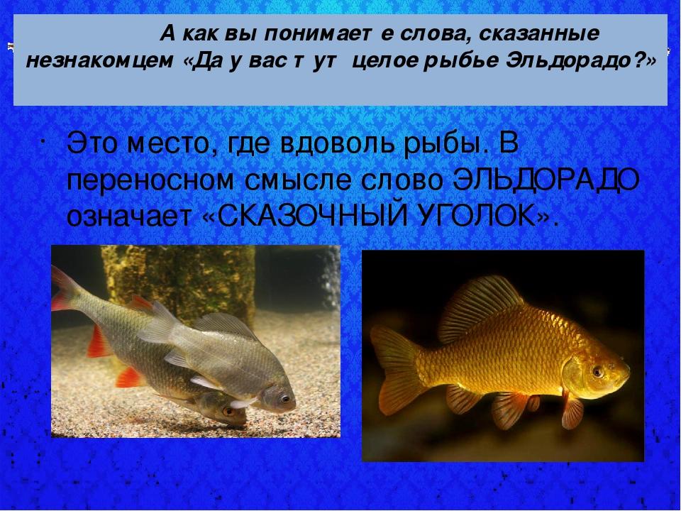 А как вы понимаете слова, сказанные незнакомцем «Да у вас тут целое рыбье Эл...