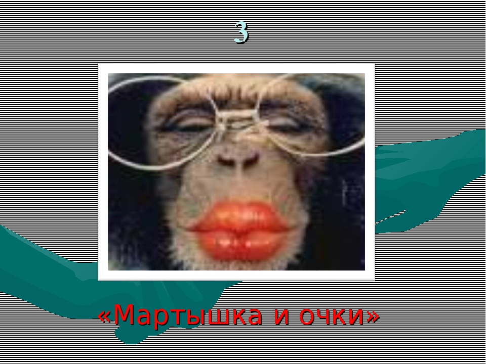 3 «Мартышка и очки»
