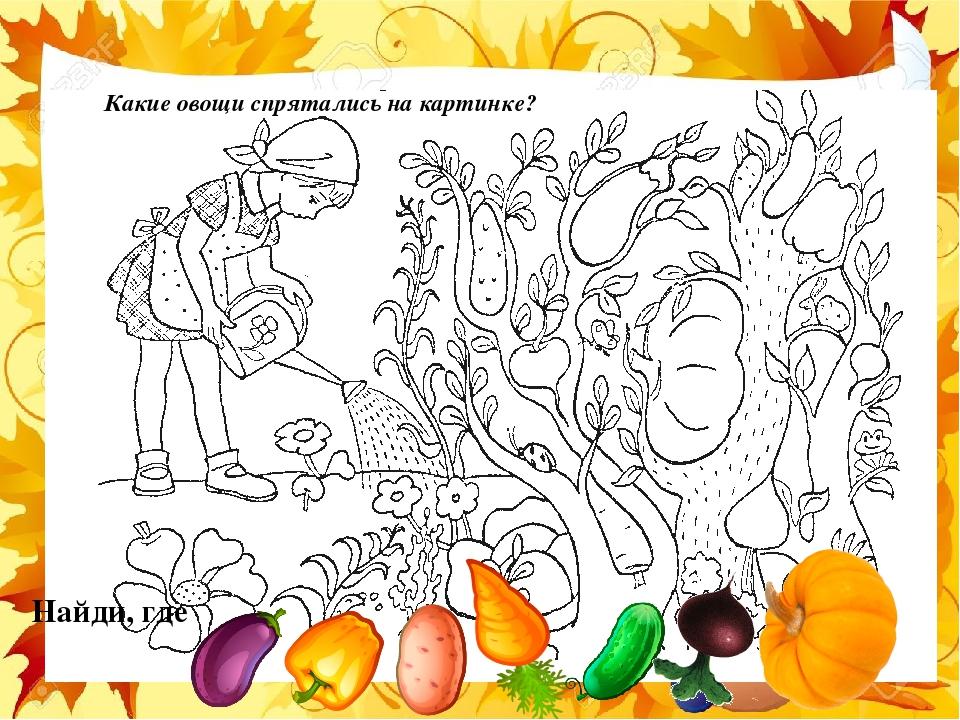 найди на картинке только овощи и фрукты