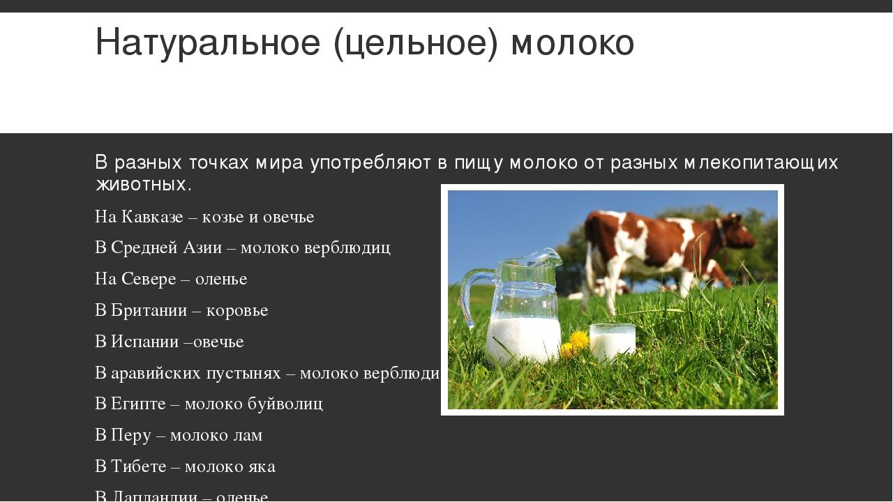 Натуральное (цельное) молоко В разных точках мира употребляют в пищу молоко о...