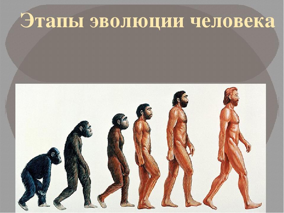 Цивилизации всей эволюции человека картинки