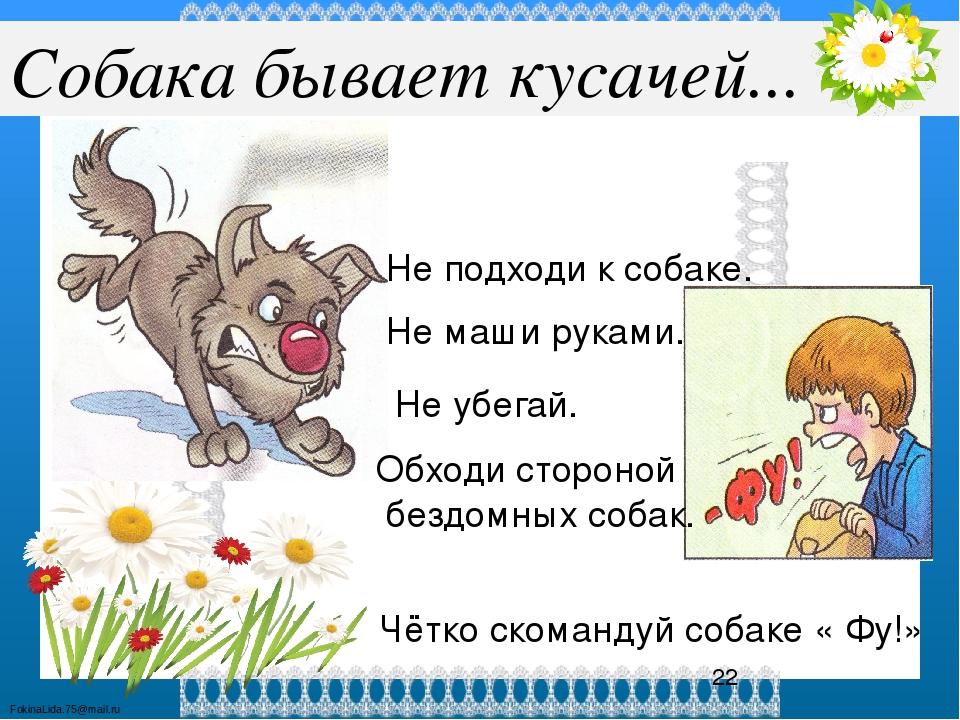 Картинки собака бывает кусачей