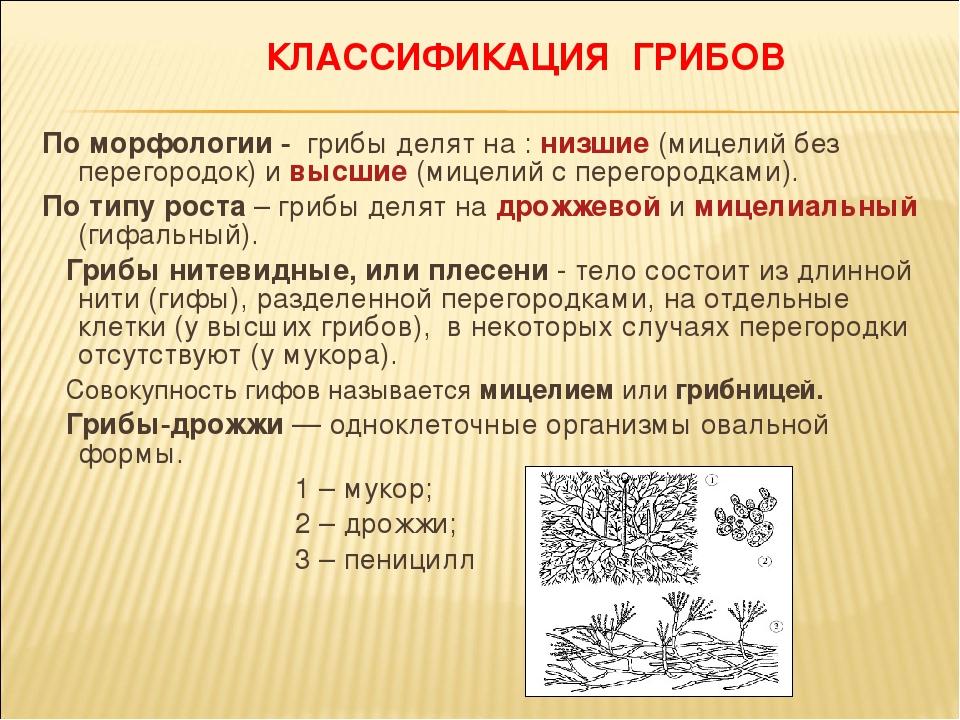 Калейдоскоп новостей - Страница 2 Img4