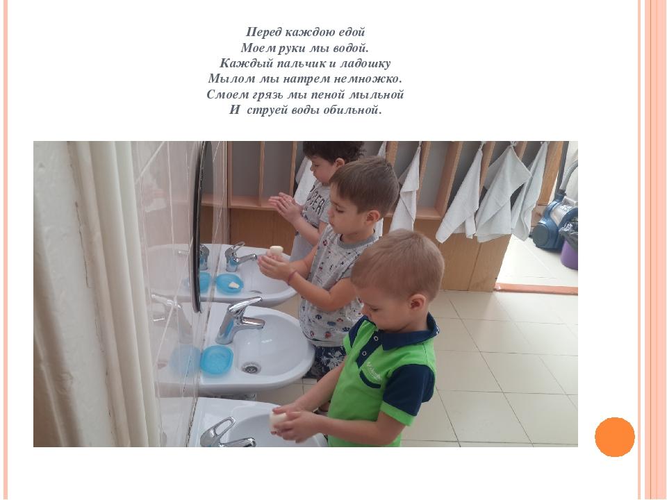Перед каждою едой Моем руки мы водой. Каждый пальчик и ладошку Мылом мы натре...