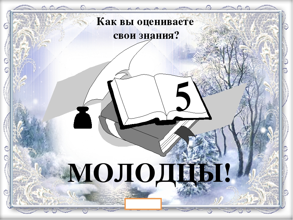 5 ВЫХОД МОЛОДЦЫ! Как вы оцениваете свои знания?