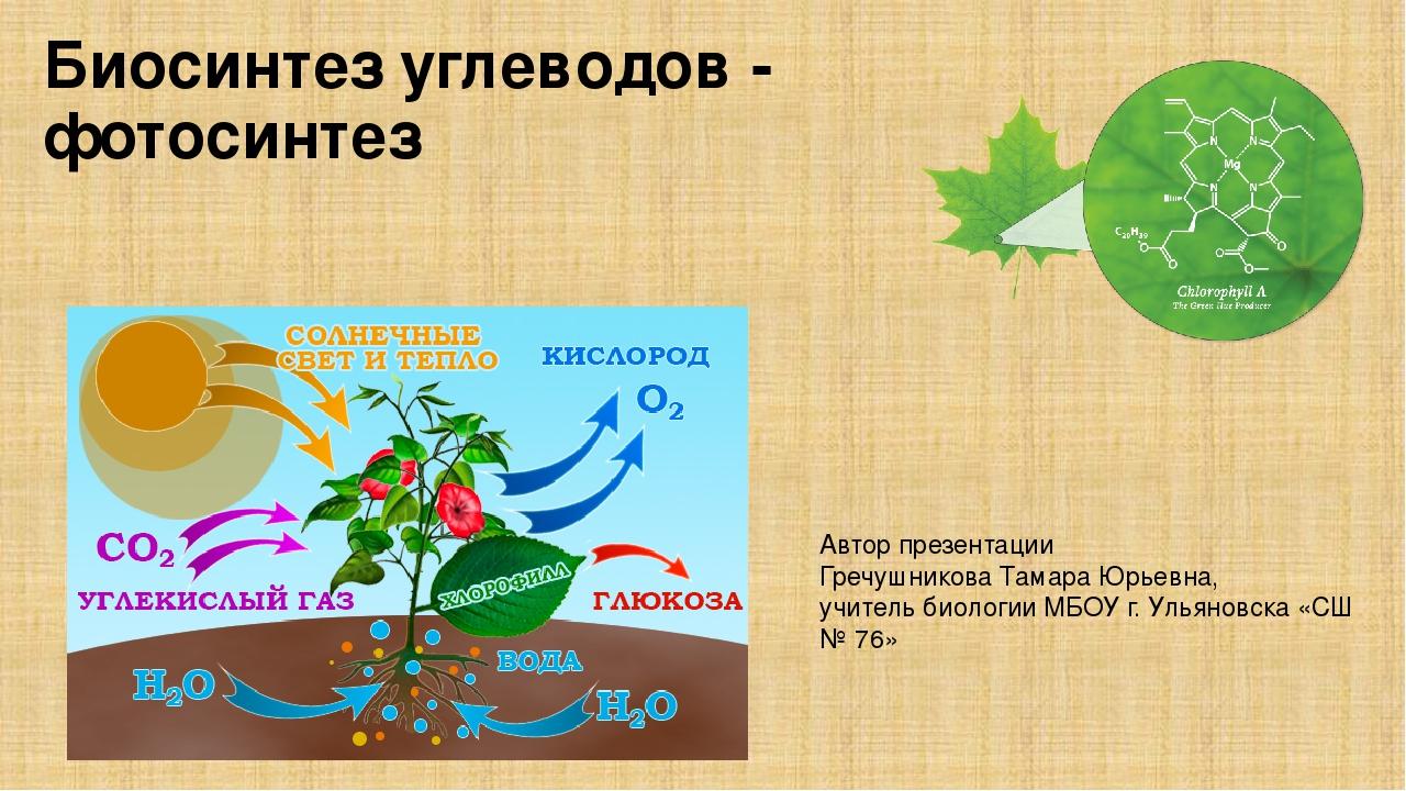 Картинки на тему фотосинтез, открытки доброе утро