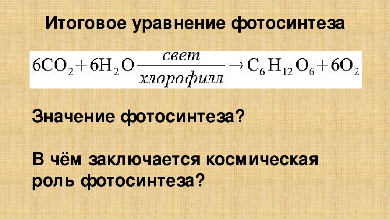 примеси фотосинтез углекислого газа уравнение себе