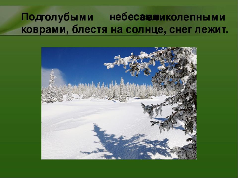 Под небесами коврами, блестя на солнце, снег лежит. голубыми великолепными