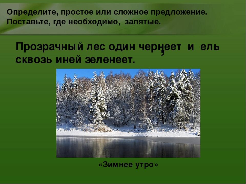 Прозрачный лес один чернеет и ель сквозь иней зеленеет. Определите, простое и...