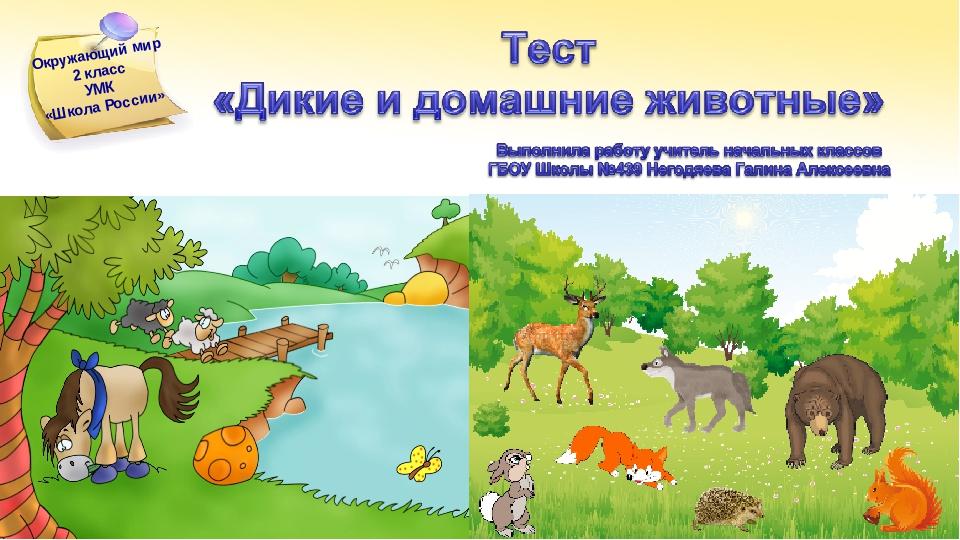 Дикие и домашние животные 2 класс окружающий мир