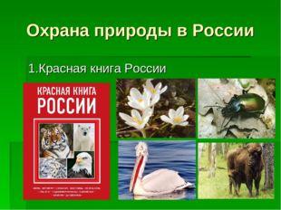 Охрана природы в России 1.Красная книга России