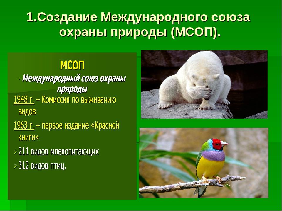 1.Создание Международного союза охраны природы (МСОП).