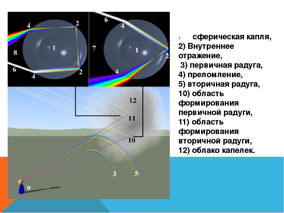 сферическая капля, 2) Внутреннее отражение, 3) первичная радуга, 4) преломлен...