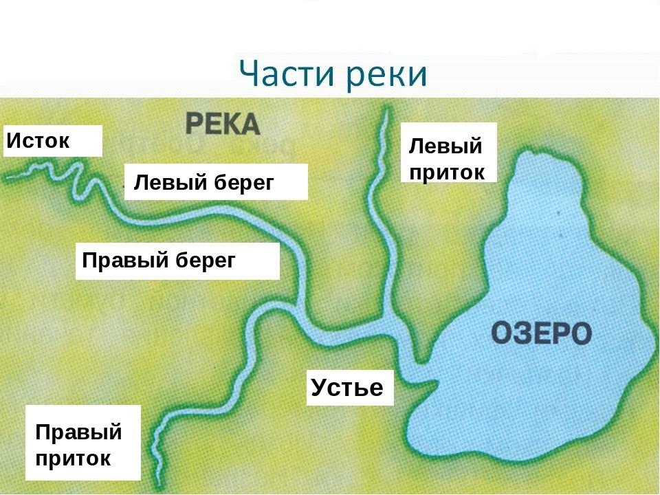 Картинка с частями реки
