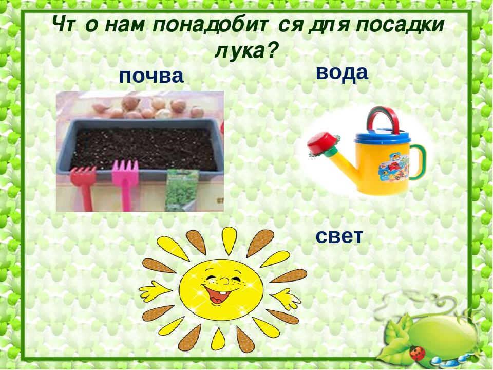 Посадка лука картинки для детского сада