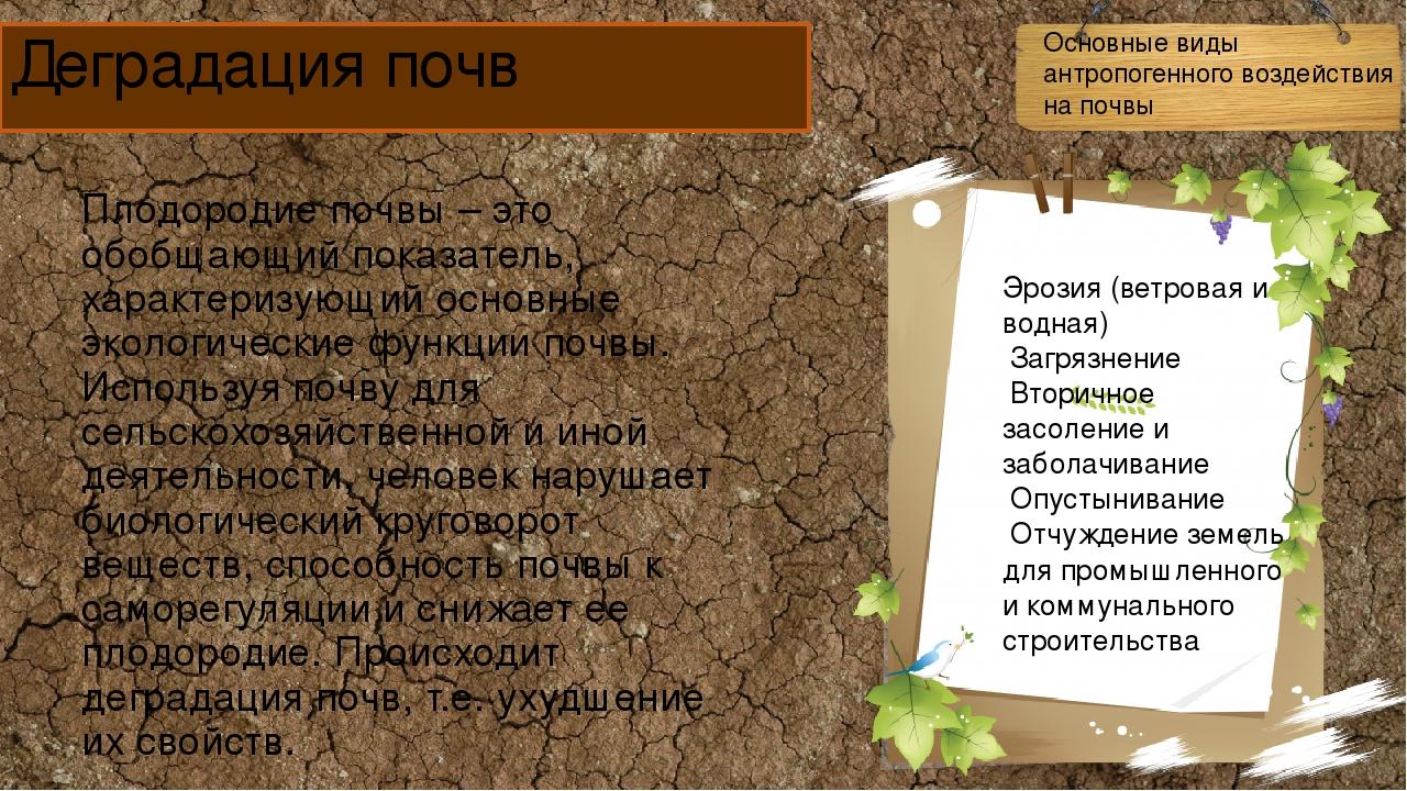 Сертификация почв - это работа сертификация минск