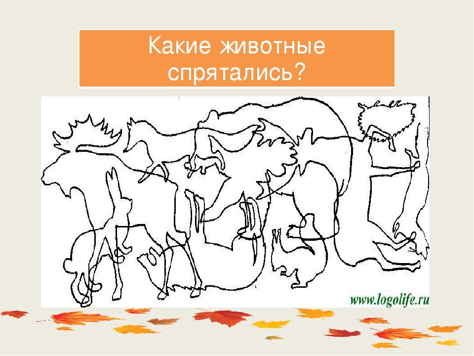 место само в чем хитрость сколько животных на картинке всех средмашевских