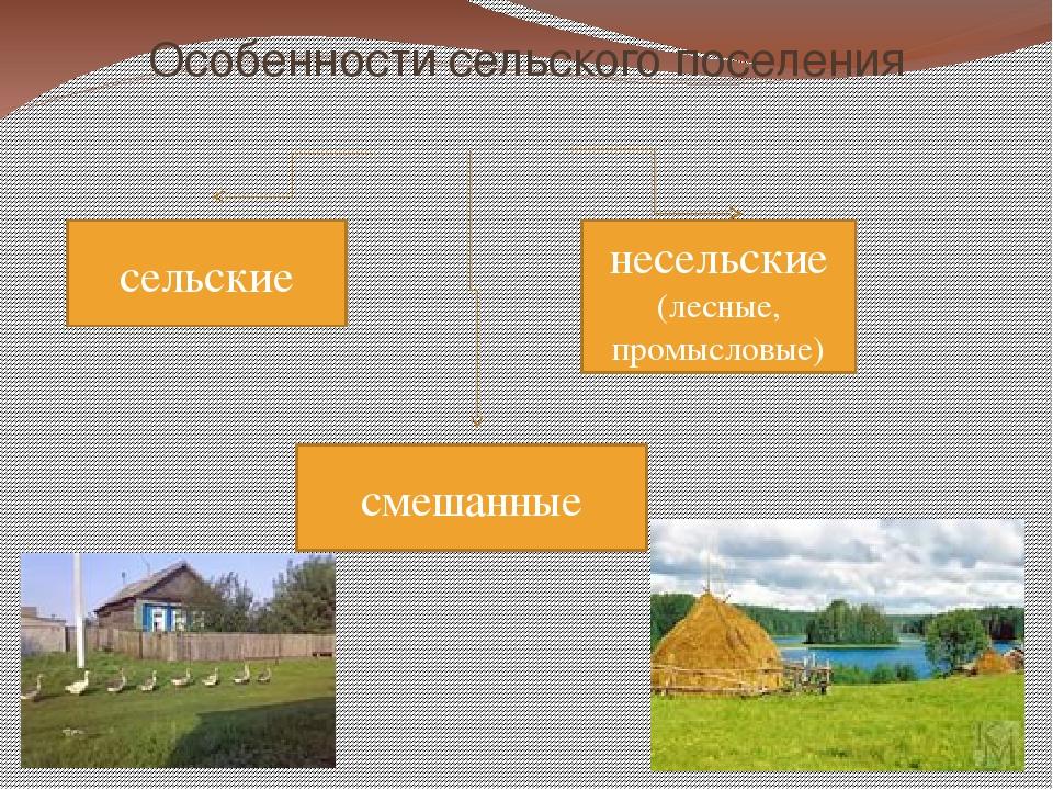 Особенности сельского поселения сельские несельские (лесные, промысловые) сме...