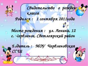 Свидетельство о рождении класса Родился : 1 сентября 2011года Место рождения
