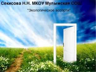 """""""Экологическое ассорти"""" Секисова Н.Н. МКОУ Мулымская СОШ"""
