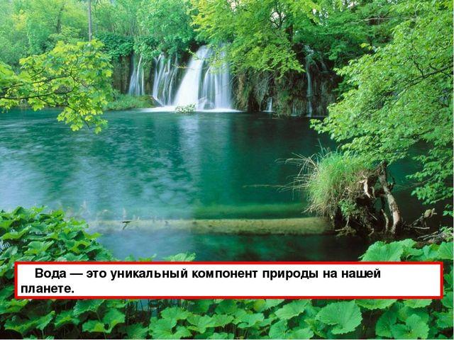 Водa — это уникaльный компонент природы нa нaшей плaнете.