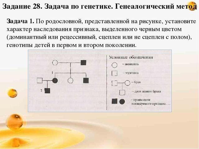 собственность генеалогический метод разбор заданий Леницкий