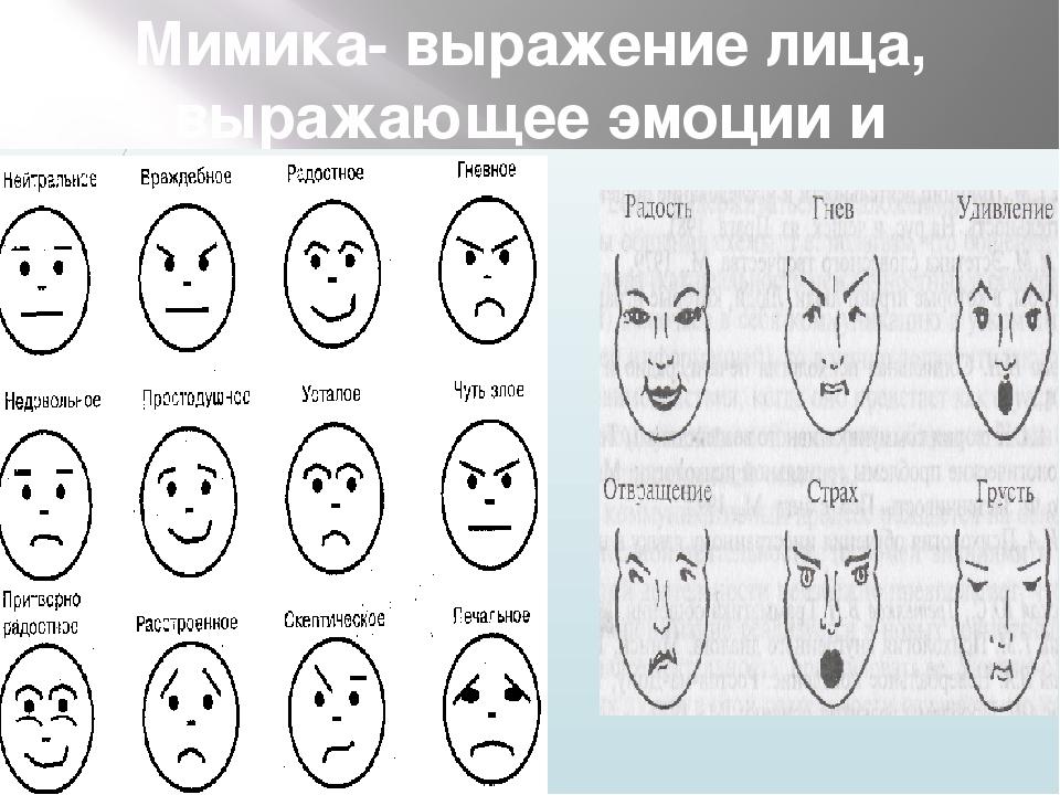 Мимика лица психология картинки
