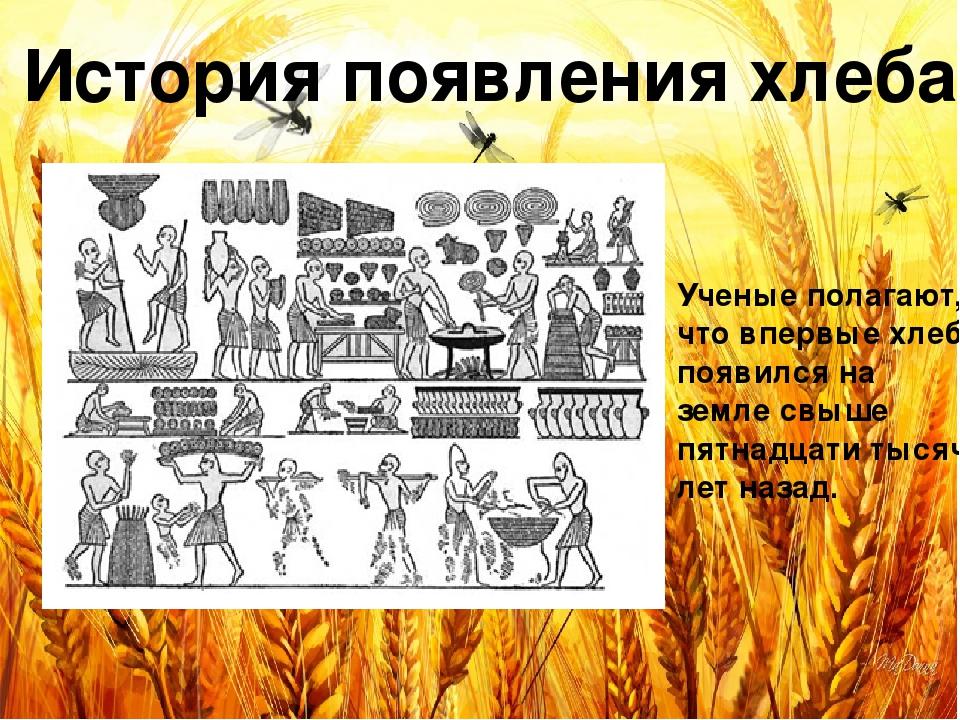 гаражей картинки история возникновения хлеба музей естественной