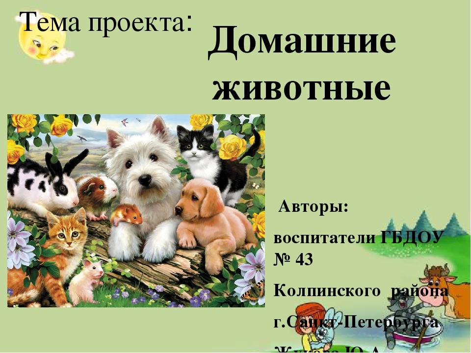 Домашние животные в картинках презентация
